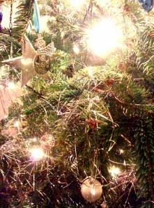 Tree (taken by eldest godchild)